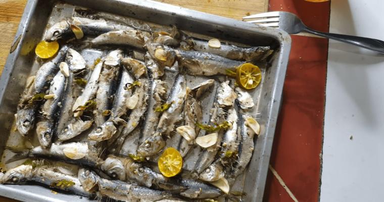 Fresh Sardinas: Quick Cook and Tasty